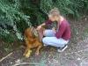 Betreute Hunde - Hundebetreuer