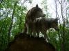 Der Siberian Husky oder Arctic Husky