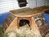 Kleintierbetreuung / Meerschweinchen-Zuhause