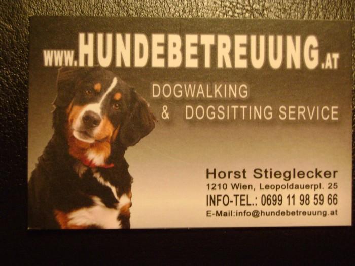 Hundebetreuung Job