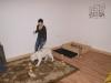 Welpentraining Fotos - Hundebetreuung Stieglecker - Indoor Einzeltraining