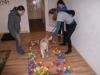Welpentraining Fotos - Hundebetreuung Stieglecker - Hundewelpen Schule