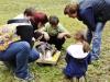 Welpentraining Fotos - Hundebetreuung Stieglecker - Professionelles Welpentraining